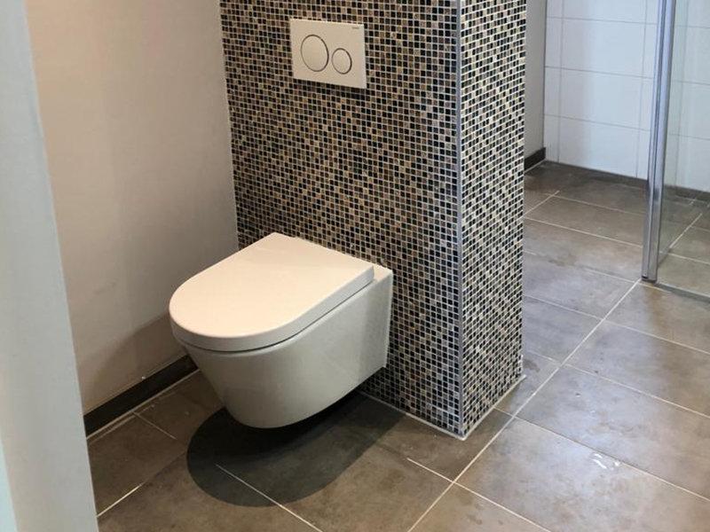 Toilet kitten Amsterdam